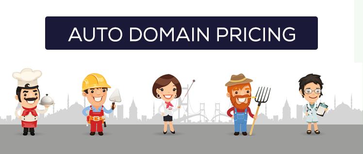Otomatik Domain Fiyatlandırma